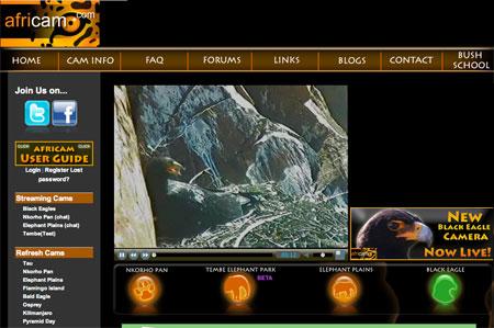Africam Website